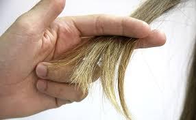 cortes de pelo de mujer sanear las puntas
